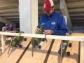Zucchini-Racessm-495x400.jpg