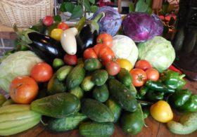 Lower Piney Heirloom Vegetables